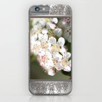iPhone & iPod Case featuring Aronia Blossoms by JMcCombie