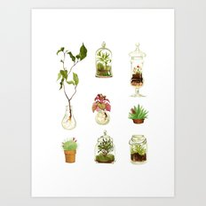 PLANTS IN GLASS AND POTS Art Print