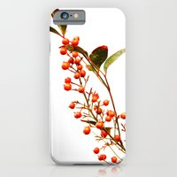 A Fruitful Life iPhone 6 Slim Case