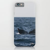 iPhone & iPod Case featuring humpback whale tail by Katie Pelon
