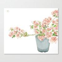 Heavenly Blossom #1 Canvas Print