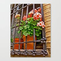 Canvas Print featuring Caged by KeCuddihee
