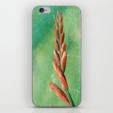 Crosmosia iPhone & iPod Skin
