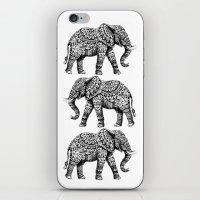 Ornate Elephant 3.0 iPhone & iPod Skin