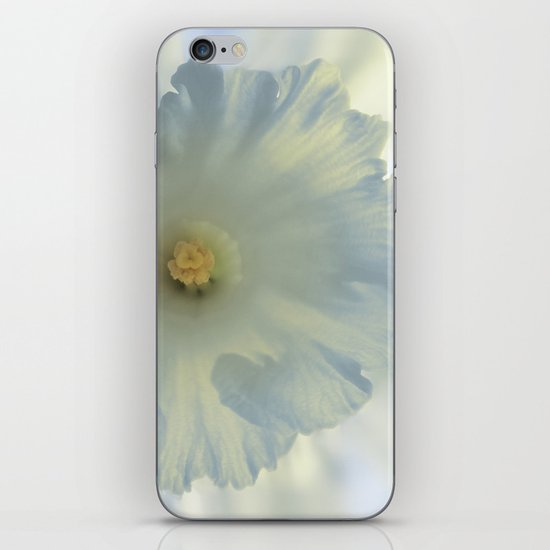 Narcissus iPhone & iPod Skin