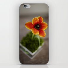 FLOWER ON FIRE iPhone & iPod Skin