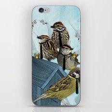 Smoking Birds Print iPhone & iPod Skin