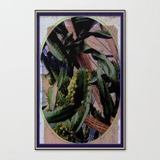 Twisted  Cactus Canvas Print