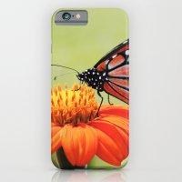 Orange Flower iPhone 6 Slim Case