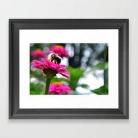 Beelieve Framed Art Print