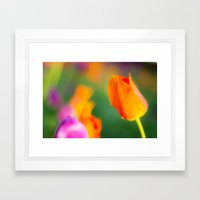Spring Beauties Framed Art Print