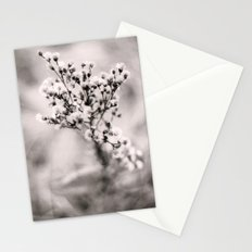 shoot Stationery Cards