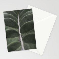 Money Plant Stationery Cards