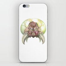 Metroid Physiology iPhone & iPod Skin