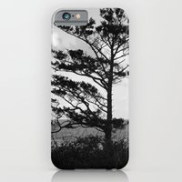 iPhone & iPod Case featuring Tree Beside the Ocean by Julie