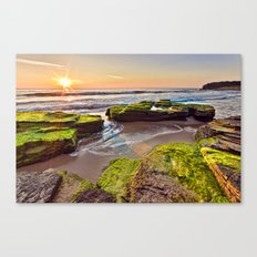a Mossy Sunrise  Canvas Print