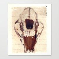 X Ray Terrestrial No. 3 Canvas Print