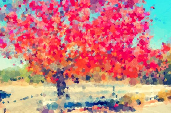 Orange Tree Watercolor  Art Print