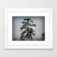 Morning Moon Shine Framed Art Print