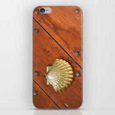 Gold shell iPhone & iPod Skin