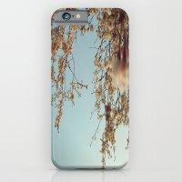 Cherry Blossoms 2 iPhone 6 Slim Case