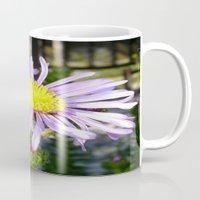 Close Up of A Violet Aster Flower Spring Bloom  Mug