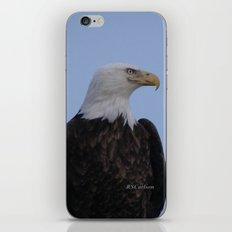 Bald Eagle on Watch along the Kenai River iPhone & iPod Skin