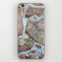 ReNewal iPhone & iPod Skin