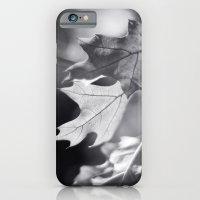 Winter Oak In Black And … iPhone 6 Slim Case