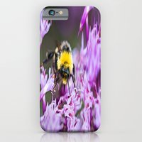 bee iPhone & iPod Cases featuring Bee by Dora Birgis