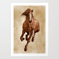 Sherman Art Print