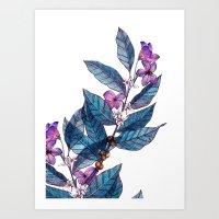 Botanical Study Of A Cof… Art Print