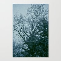 That Cold Feeling Canvas Print