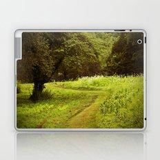 A Summers Trail Laptop & iPad Skin