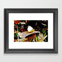 Cabbage White Butterfly … Framed Art Print