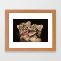 CLOUDED LEOPARD CUBS LOV… Framed Art Print