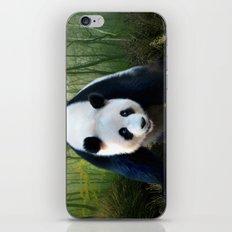 The Giant Panda iPhone & iPod Skin
