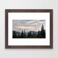 Cloudy Pines Framed Art Print