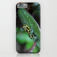 iPhone & iPod Case featuring Poison Dart Frog R. Imitator Male by Kimberly Sulzer-Girlwithafrogtattoo