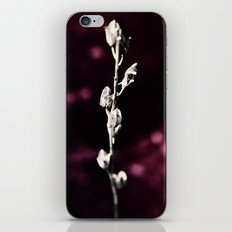 Rubin iPhone & iPod Skin