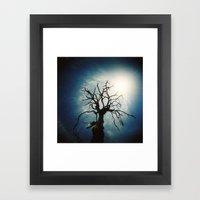 Tree From Holga Framed Art Print