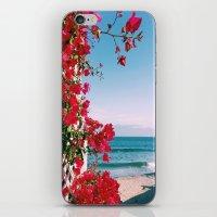 Flower Water iPhone & iPod Skin