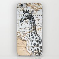 Giraffe in Africa: All Neck  iPhone & iPod Skin