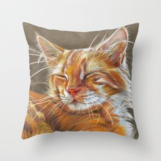 Sleeping Ginger Kitten CC12-005 Throw Pillow