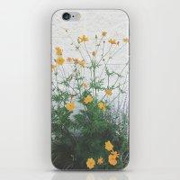 Yellow + Purple iPhone & iPod Skin