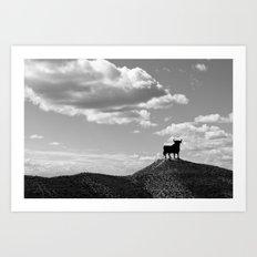 Osborne bull Art Print