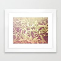 Furry Grass Framed Art Print