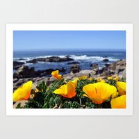 BODEGA POPPIES Art Print