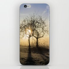 Angel Dusk iPhone & iPod Skin