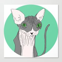 Nicolas the Sphynx Canvas Print